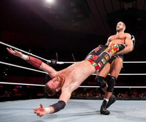 wwe, sami zayn, and cesaro image