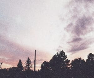 sky, trees, and purple image