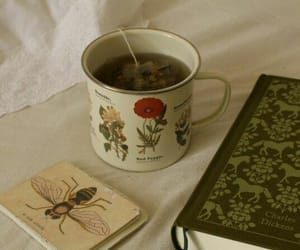 book, tea, and indie image