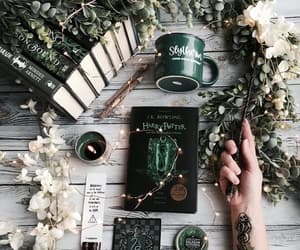 slytherin, book, and draco malfoy image