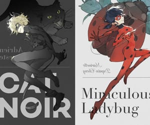 Chat Noir, ladybug, and miraculous ladybug image