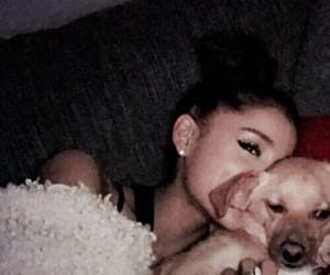 ariana grande, Toulouse, and ariana image
