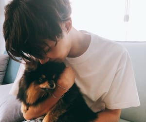 army, cute, and jhope image