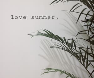 plants, summer, and love summer image