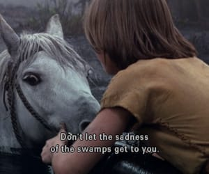 quotes, horse, and sad image