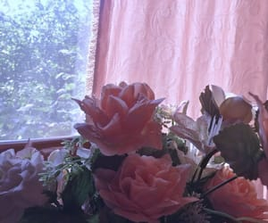 aesthetic, soft, and roses image