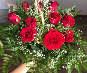 boyfriend, flores, and red image