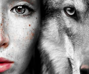 wolf, girl, and eyes image