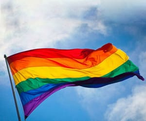 gay pride, rainbow flags, and lgbt image