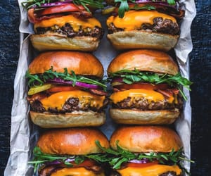 burger and food image