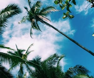 summer, sky, and beach image