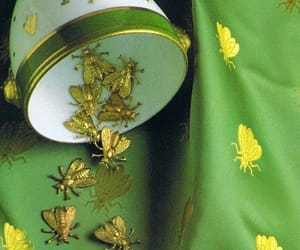 bees, green, and tableware image