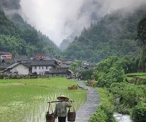 china, country, and hongkong image