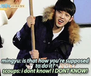 gif, Seventeen, and scoups image
