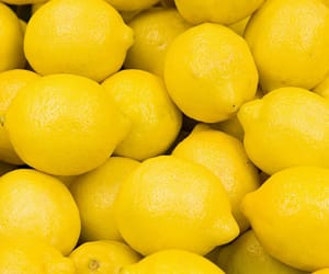 lemon, yellow, and background image