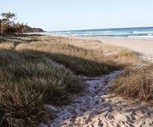 beach, coast, and june image