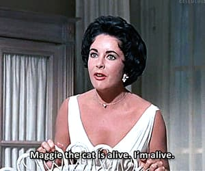 Cat on a Hot Tin Roof, Elizabeth Taylor, and gif image