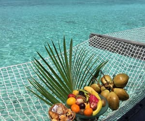 fruit, food, and sea image
