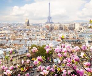 building and paris image