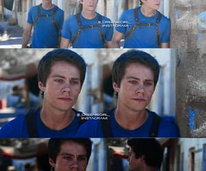 thomas, maze runner, and dylan obrien image
