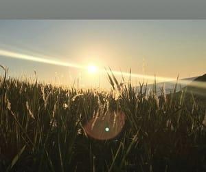 nature, sunset, and sunrise image
