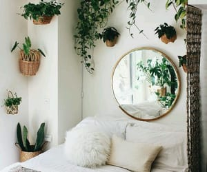 bedroom, plants, and mirror image