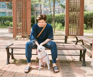 jungkook, jimin, and jin image