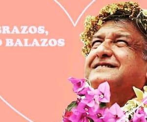 pink, president, and amlo image