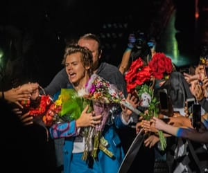 Harry Styles, flowers, and styles image
