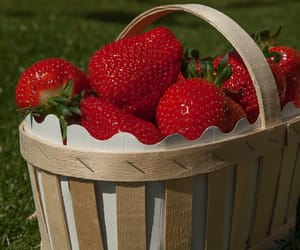 strawberry, cottagecore, and aesthetic image