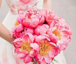 flower, girl, and instagram image