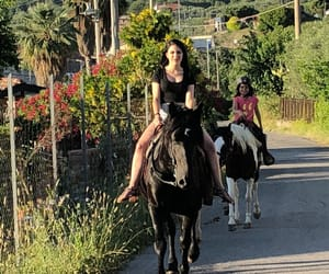 cavallo, relax, and horse image