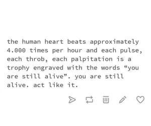 life and tumblr image