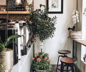 art and plants image