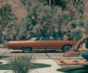 california, cars, and palm springs image