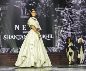 walks the ramp, dia mirza, and showstopper image
