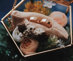 marriage, flower box, and promise rings image