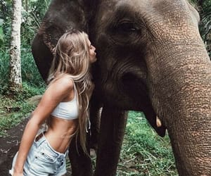 girl, animal, and elephant image