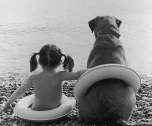dog, black and white, and sea image