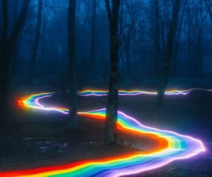 forest, rainbow, and dark image