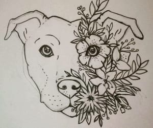 dog, draw, and drawing image