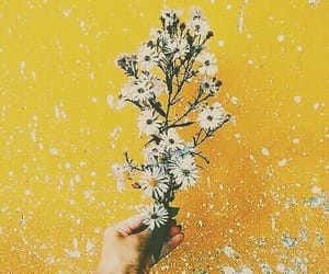 aesthetic, chipping paint, and flowers image