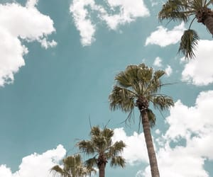 aesthetic, blue, and cali image