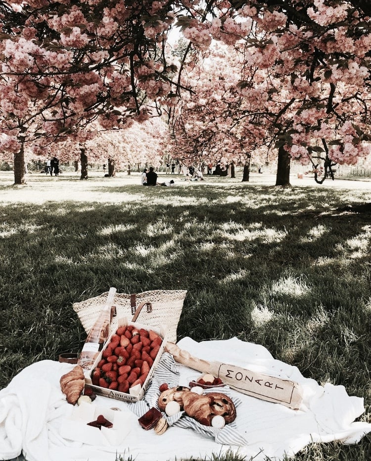 food, park, and picnic image