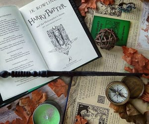 autumn, book, and slytherin image