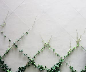 geometry, white, and green image