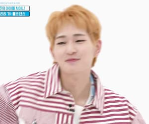 gif, kpop, and Onew image