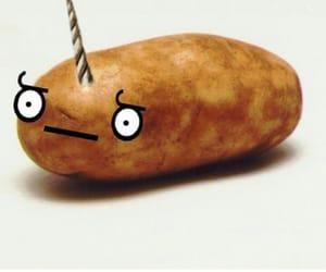 potato, unicorn, and unitato image