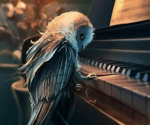 art, owl, and music image