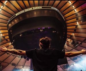 msg, live on tour, and Harry Styles image